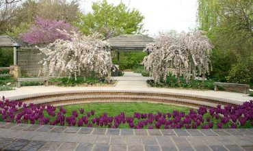 Rentals botanica spring is a wonderful time to use botanica as a wedding venue junglespirit Choice Image