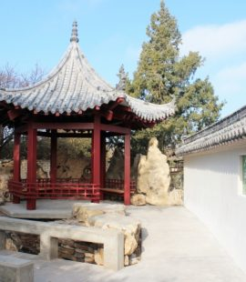 enjoy calming rock garden and pagoda