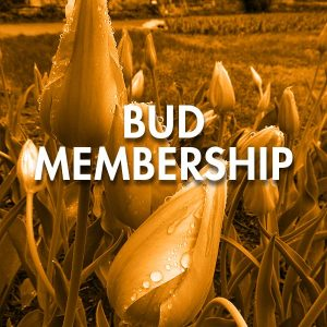 Get more out of your membership to Botanica