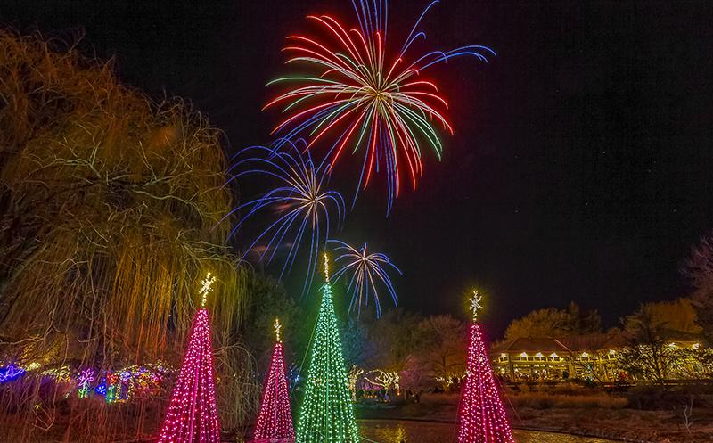 New Year\'s Eve – Botanica