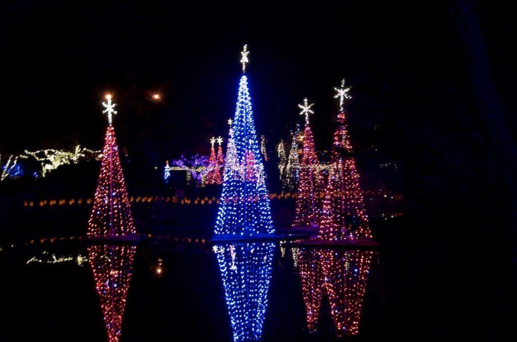 Christmas Lights In Wichita Ks.Illuminations Home Page Botanica